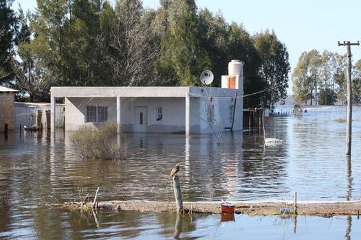 Lentamente comienza a bajar el río Salado, hay casas que hace más de 9 días que están bajo el agua. Foto: LA NACION / Santiago Hafford