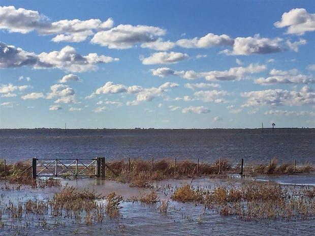 La laguna Mar Chiquita en Junín está desbordada y afecta campos de la zon