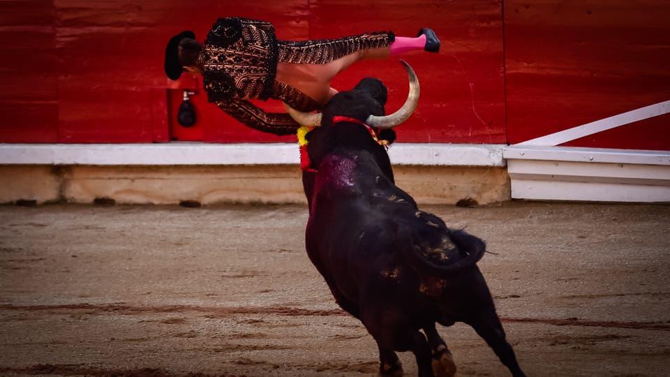 El festival y los encierros de San Fermin, en Pamplona. A primera hora de la mañana cientos de personas corren frente a 6 toros que a la tarde se enfrentan a los toreros en la plaza. Foto: AP / Alvaro Barrientos