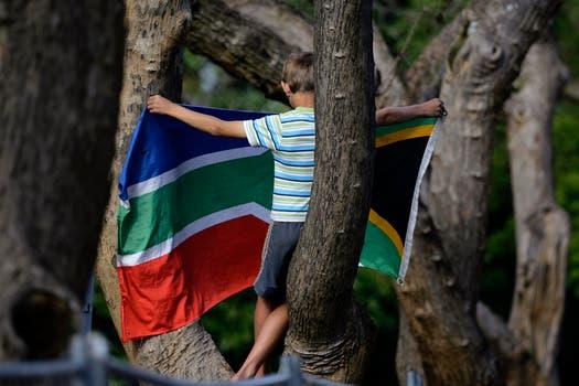 Un niño en un árbol con la badera sudáfricana saluda a la caravana que lleva a Mandela. Foto: Reuters