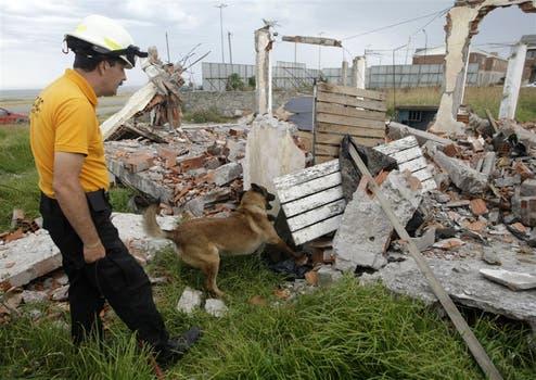 CATASTROFES. Los perros de Acecc rescatan personas y cadáveres en derrumbes, avalanchas o aludes. Foto: Mauro Rizzi