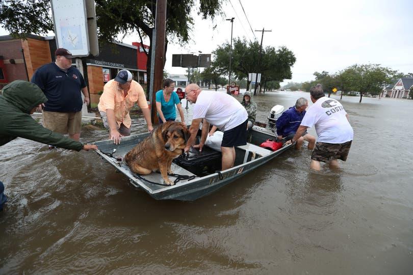 Muchos usaron sus propios botes para rescatar a los vecinos de Friendswood. Foto: AP