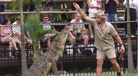 Irwin con el cocodrilo Graham en el Zoológico Australiano