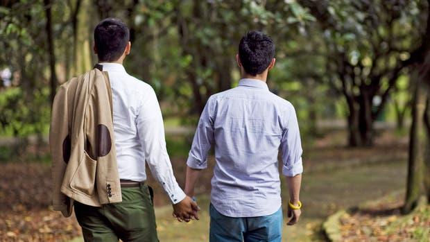 Un matrimonio homosexual podrá anotar como propio a un bebé gestado por una amiga con el óvulo de un donante