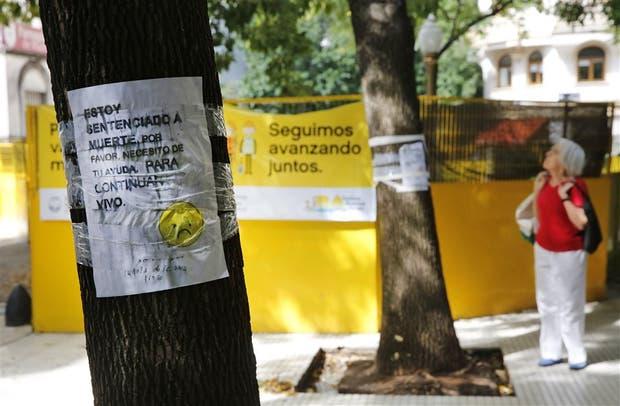 Los vecinos de Retiro están molestos: no quieren que la Ciudad retire los árboles de la calle Arroyo