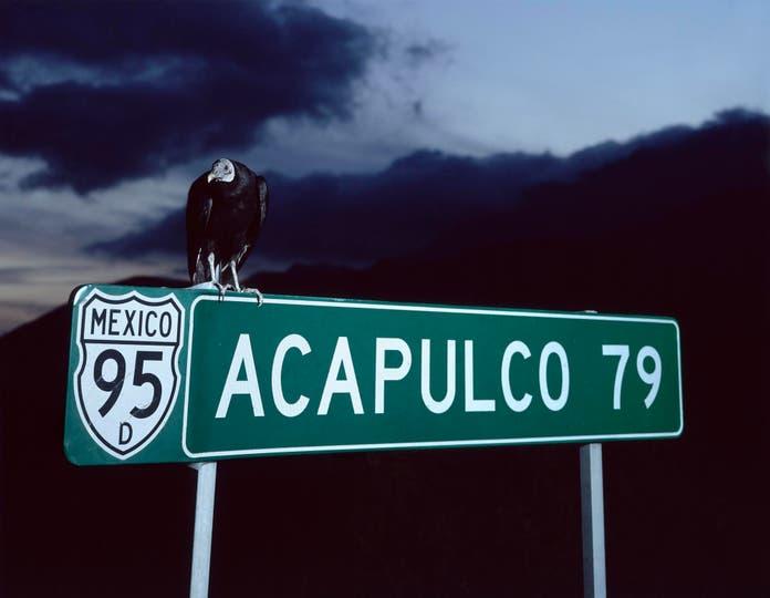 Miguel Calderón, Acapulco 79