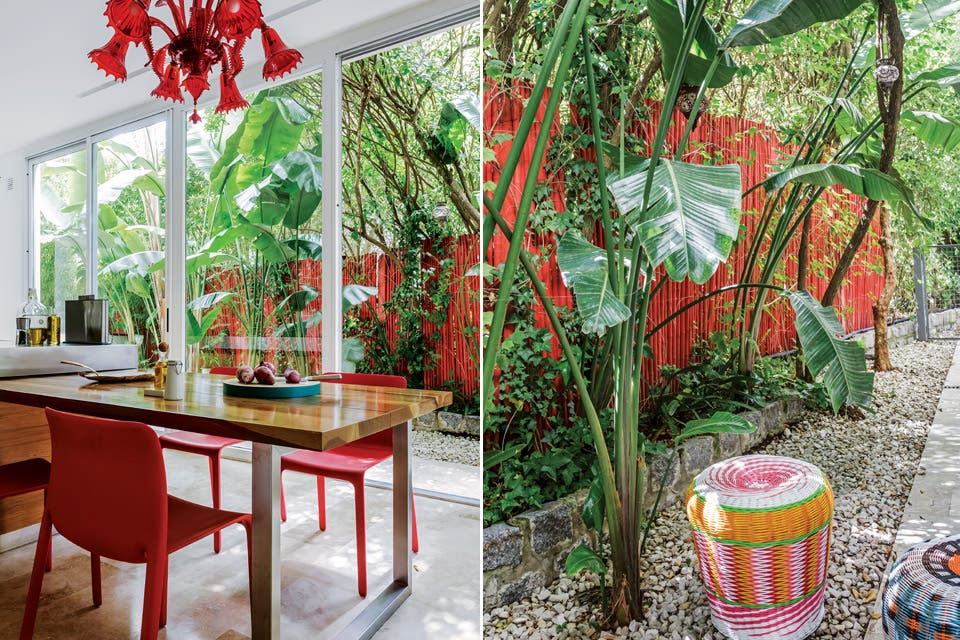 Las espectaculares lámparas traídas de Murano no sólo impusieron su tonalidad en la cocina, también inspiraron la desmesura tropical del jardín. El cerco de cañas pintadas acerca la vegetación integrando el exterior.  Foto:Living /Daniel Karp