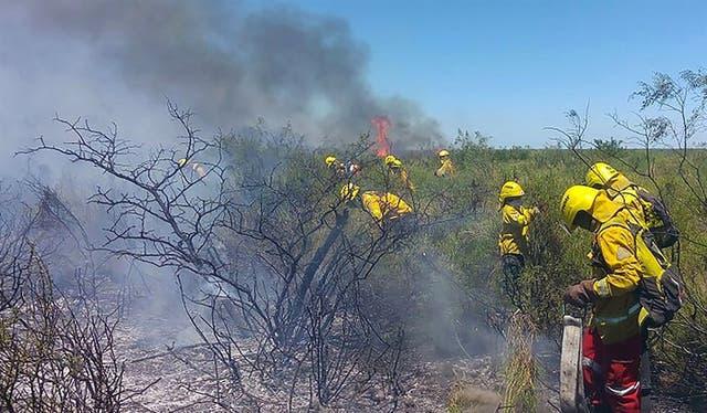 En la localidad pampeana de La Adela combatían, ayer, el fuego