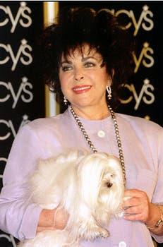 Elizabeth y su famoso perrito, Sugar, en un glamoroso evento en Nueva York, en 1996.