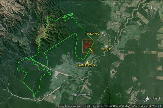 Parque Nacional Calilegua. Foto: Amigos del Parque Nacional Calilegua
