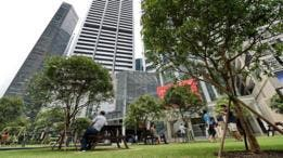 Los parques y jardines públicos abundan en Singapur.