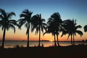 6 escapadas cerca de Miami (y varios planes para hacer con los chicos)