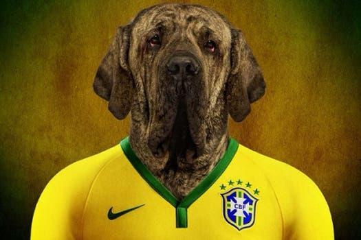 Fila de Brasil.