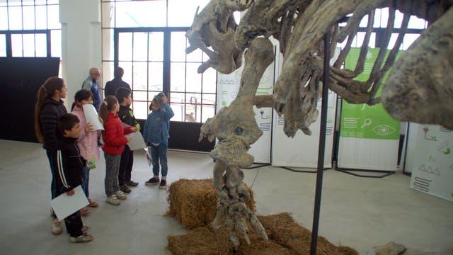 En la inauguración de la sede de Balcarce se incluyó una muestra itinerante de paleontología