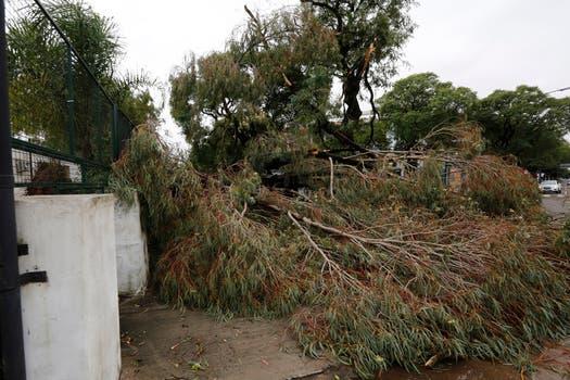 El temporal afectó, en minutos, a varios barrios de la Capital Federal y provincia. Foto: LA NACION / Ricardo Pristupluk
