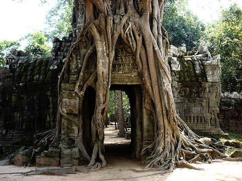 Templos de Angkor Wat, en Camboya. Foto: Flickr/triller