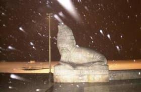 La nieve cae sobre la famosa escultura del lobo marino, en la rambla marplatense