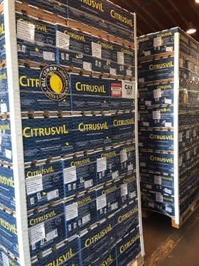 El cargamento de Citrusvil para Brasil