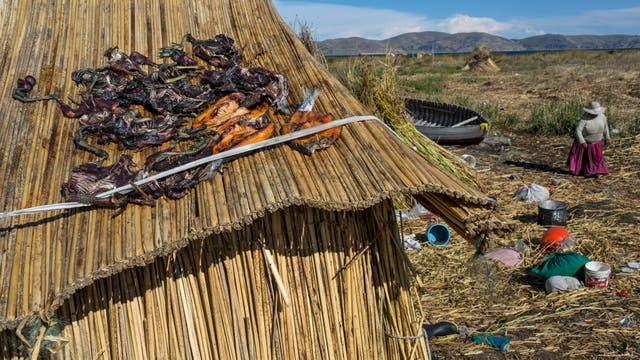 Las aves atrapadas y las truchas se ponen a secar en el techo de paja de una casa en Kapi Cruz Grande, una aldea en la orilla del lago Titicaca en la región de Puno en Perú