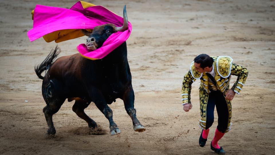 El matador español David Fandila alias El Fandi pierde su capa al toro de Fuente Ymbro durante la cuarta corrida del Festival de San Fermín. Foto: AFP / Ander Gillenea