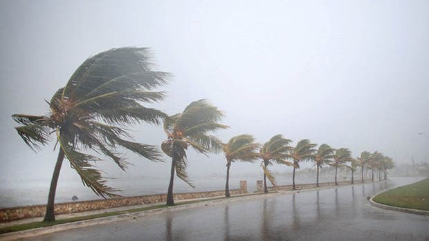 Irma llegó a Cuba anoche; con vientos de 260 kilómetros por hora, el ciclón continúa su recorrido por la costa norte de la isla, donde evacuaron a más de un millón de personas