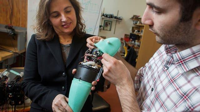 A diferencia de los modelos industriales, con estructuras rígidas, los robots blandos buscan aprovechar al máximo la flexibilidad de sus componentes al emular los músculos de los animales y humanos
