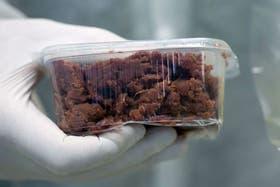 Análisis en laboratorios detectaron varios alimentos procesados y listos para consumir con ADN de caballo en lugar de vaca