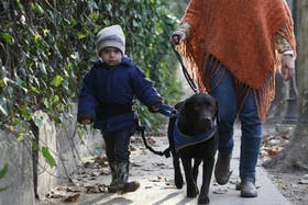 Andrés, que tiene trastorno TGD, junto a su labrador León, clave para su vida cotidiana