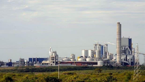 Uruguay y UPM firmaron un contrato de inversión para desarrollar la tercera fábrica de celulosa en el país