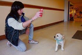 Acompañante terapéutica y adiestradora canina, se concentra en la terapia asistida por mascotas