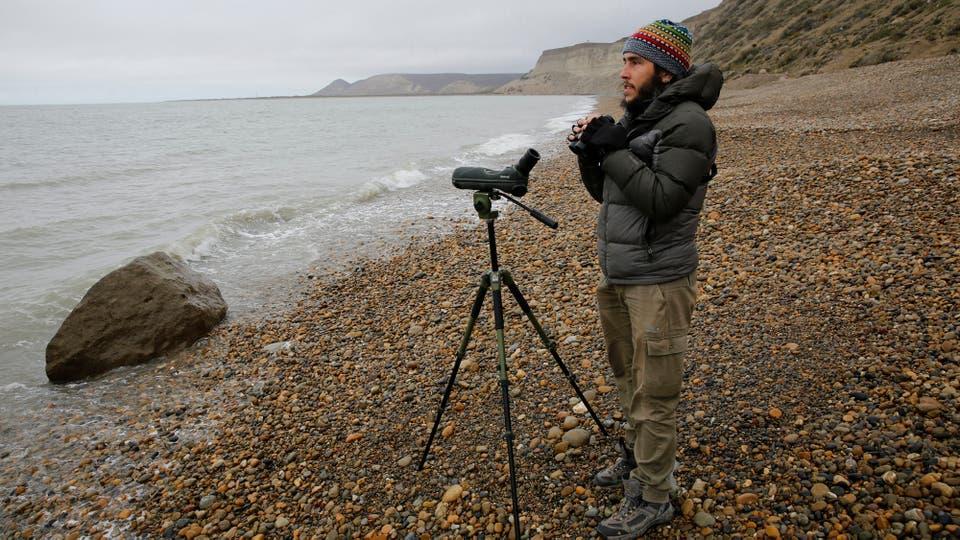"""Ignacio """"Kini"""" Roesler observa el comportamiento de éstas aves. Foto: Ricardo Pristupluk"""