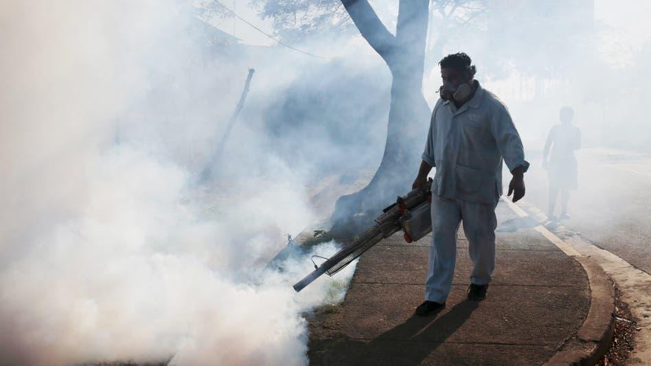 Fotos de Zika