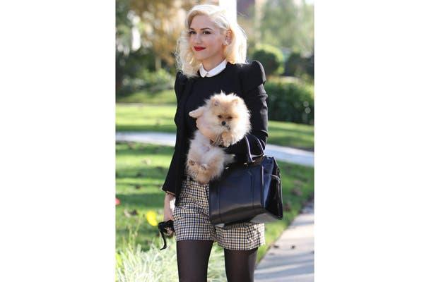 Dicen que algunas mascotas se parecen a sus dueños. Gwen Stefani junto a su perro pomeranian ¡Lo dejo a tu criterio!. Foto: Vía buzzfeed.com