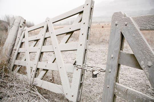 Una tranquera permanece cubierta de ceniza en un campo en San Martín de los Andes. Foto: Reuters