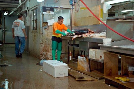 Aquaman, es Juventino Rosas, es vendedor de pescado en el Mercado de Nueva york, y envía 400 dolares por semana. Foto: www.dulcepinzon.com