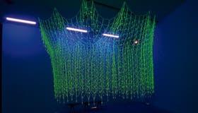 Daniel Joglar y su red de rosarios luminosos