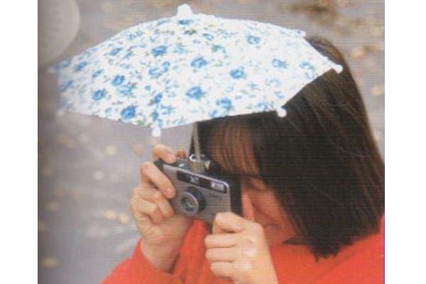 Ideal para cuidar las cámaras del mal clima. Foto: talesofinterest.net