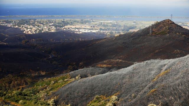 Un paisaje devastado por el fuego en Biguglia, en la isla francesa Córsega, en el Mediterraneo.