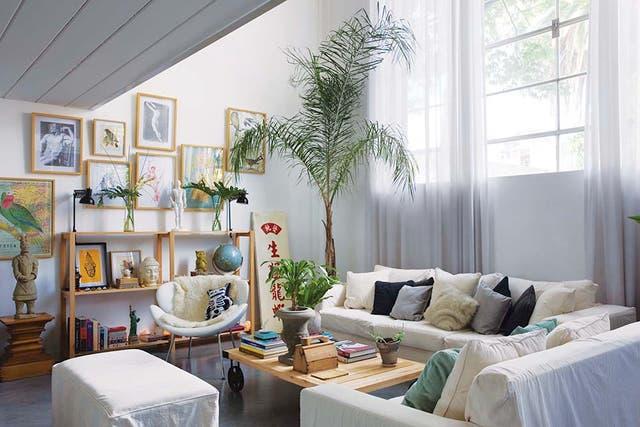En la esquina, una palmera recibe la luz desde la ventana