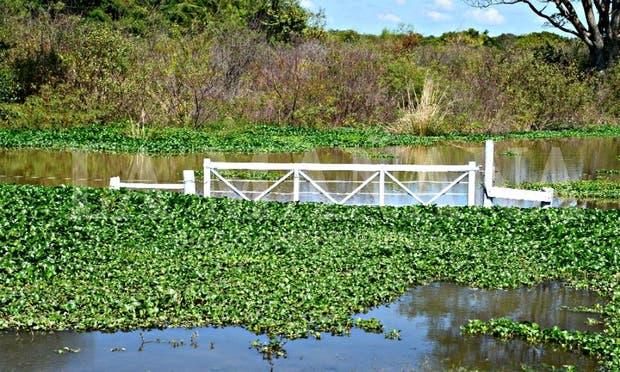 La provincia está con fuertes excesos hídricos por elevadas precipitaciones