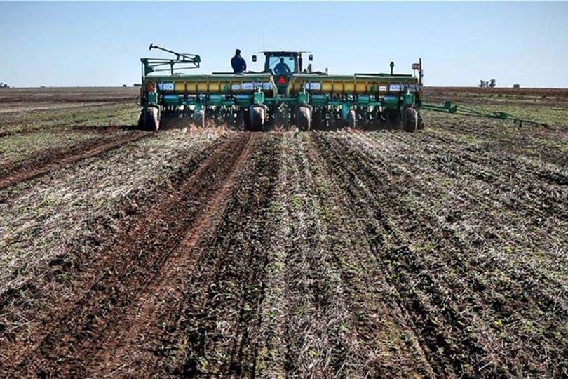 La sequía en la pampa húmeda generará pérdidas millonarias