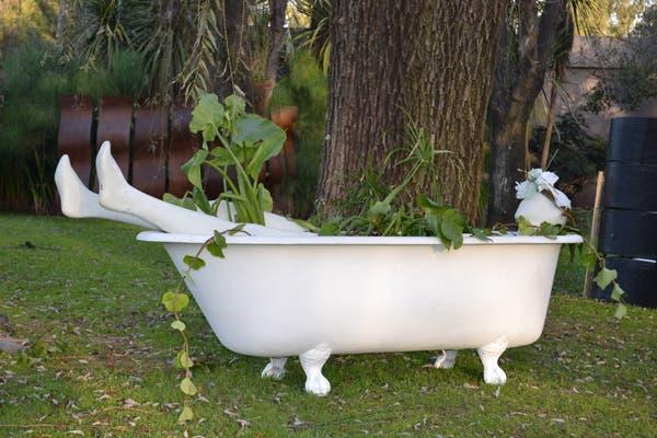 Muy divertida es esta antigua bañadera usada para tener plantas acuáticas. ¡Ofelia descansa plácidamente!. Foto: Soledad Avaca Cuenca
