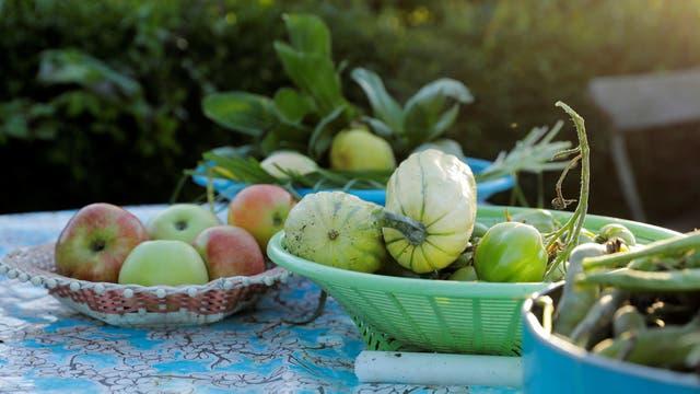 Verduras y frutas sobre una mesa en el jardín de de Lena Israelsson en Estocolmo