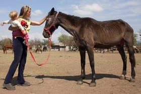 El refugio Cherubicha se convirtió en un hospital de campaña veterinario