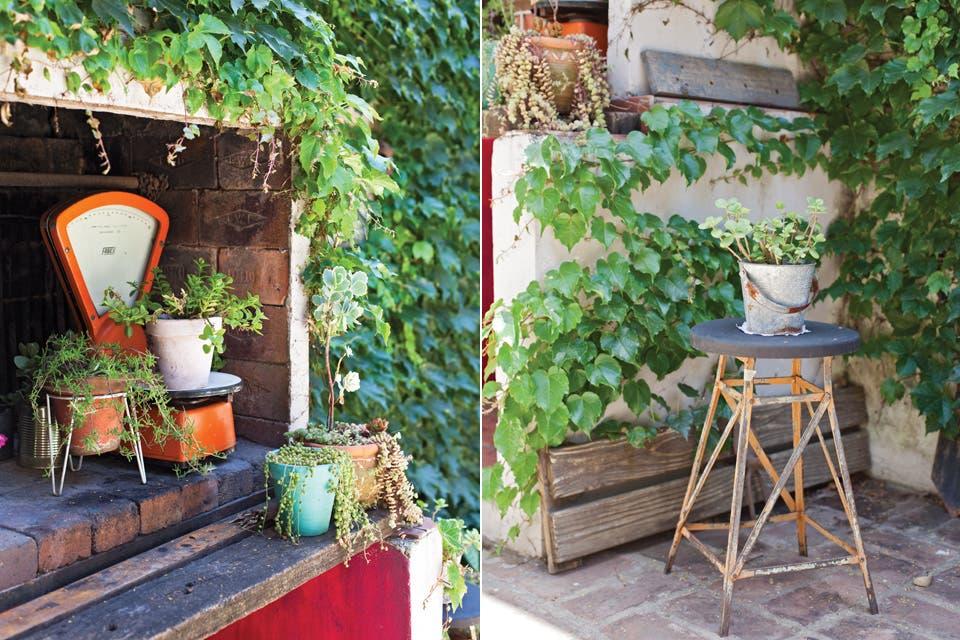 """""""La enredadera que tapiza toda la pared da un marco verde tan perfecto que no me pareció necesario poner muchas más plantas"""".  /Javier Picerno"""
