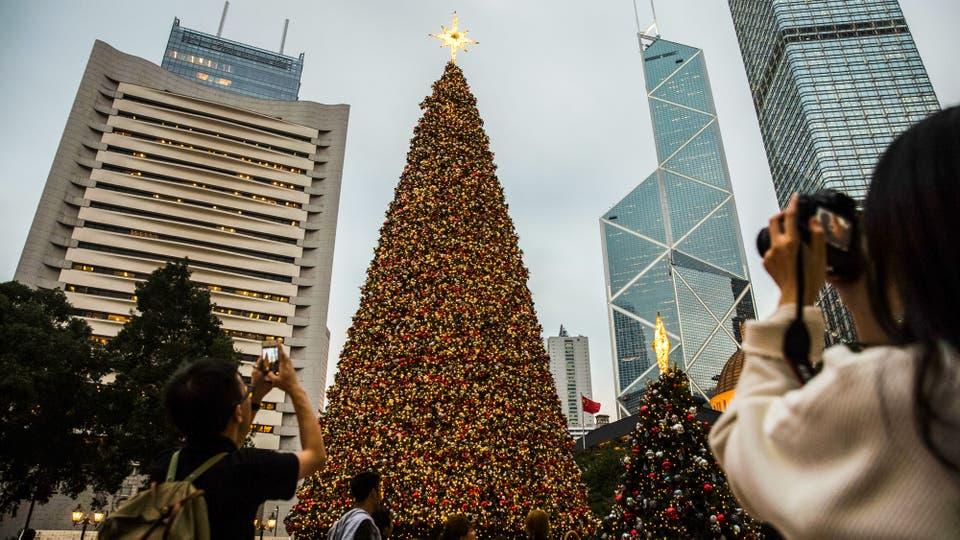 En fotos los mejores rboles de navidad del mundo - Los mejores arboles de navidad ...