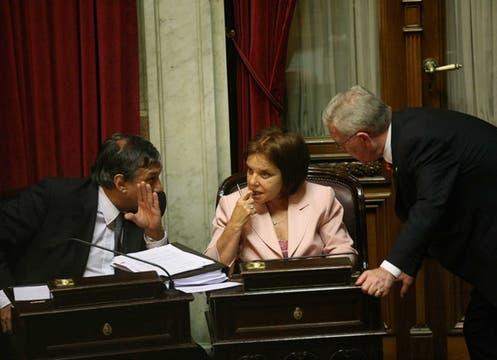 La senadora Hilda ´Chiche´Duhalde, uno de los votos en contra. Foto: LA NACION