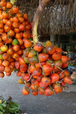 Un merodeo gastronómico por el país centroamericano