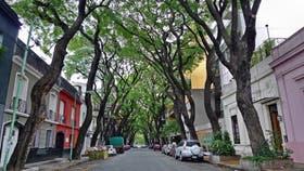 El barrio de Palermo