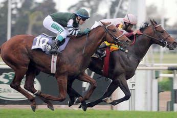 Turf: Teodisio Joy está listo para afrontar todos los desafíos del Jockey Club